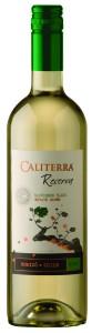 caliterra-reserva_sauvignon_blanc